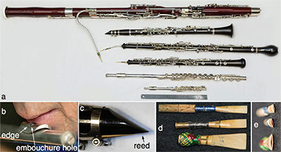 The Acoustics of Woodwind Musical Instruments – Joe Wolfe